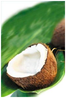 HEALTH AND NUTRITIONAL BENEFITS FROM COCONUT OIL